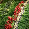 Plant Based Diets and Climate Change