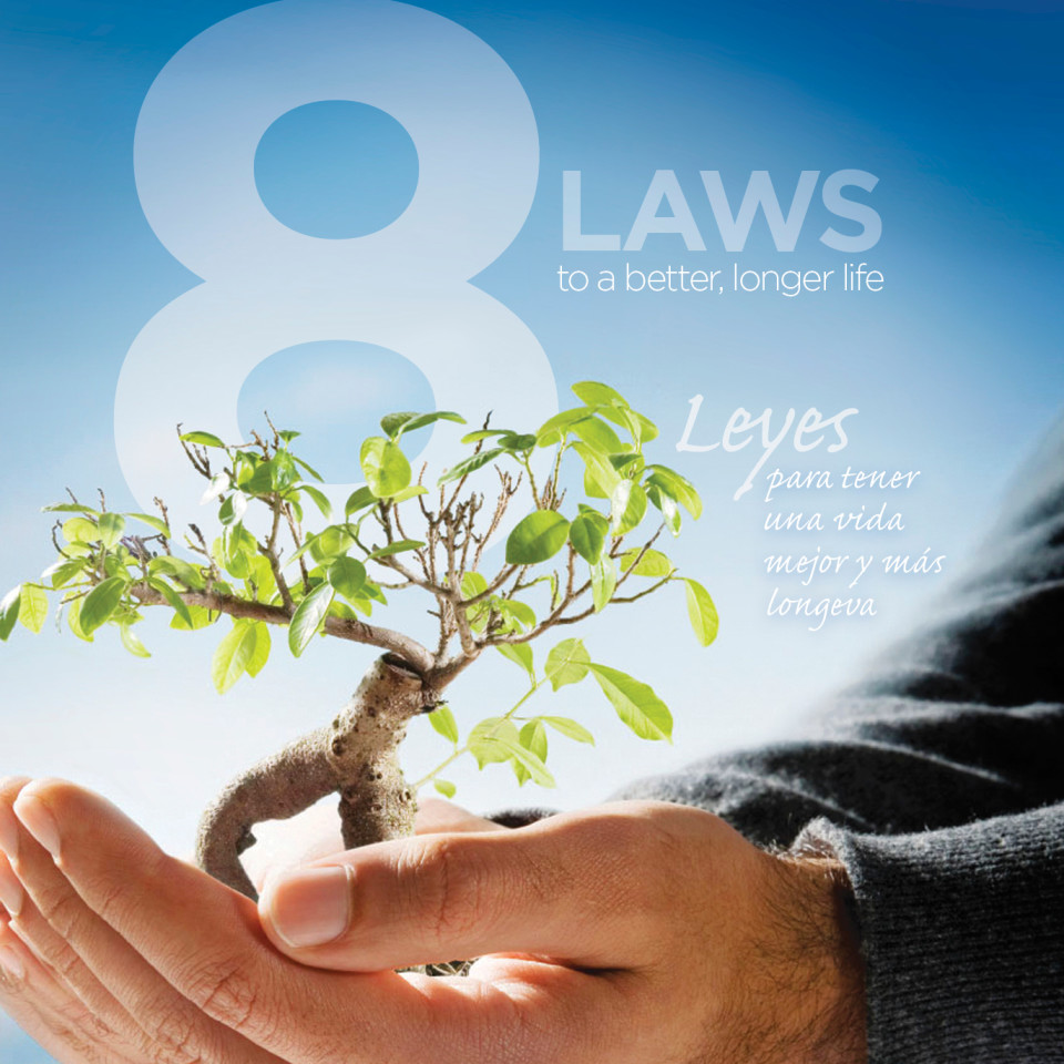 8-laws-course-image