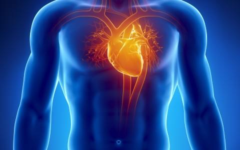 Ask the Doctor Harvey Hahn Heart