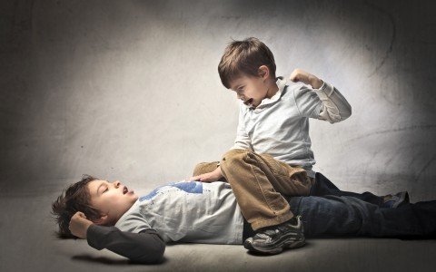 Sibling Fight! Dealing With Quarrelsome Children