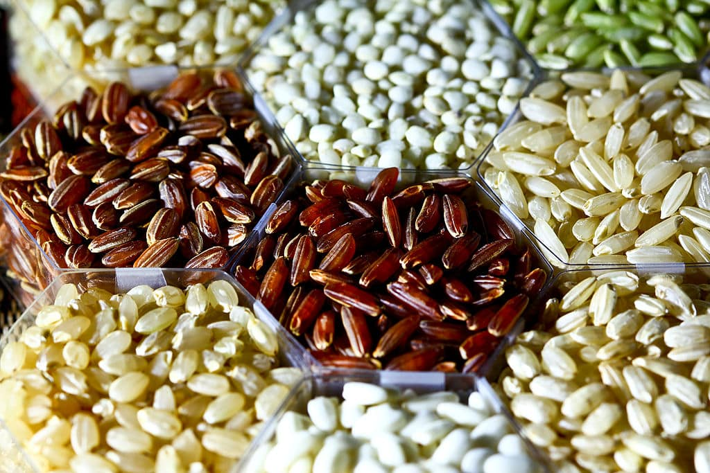 types of brown rice