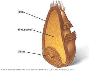 whole grain info