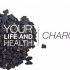 your life and health charcoal
