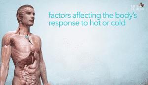 factors in body response